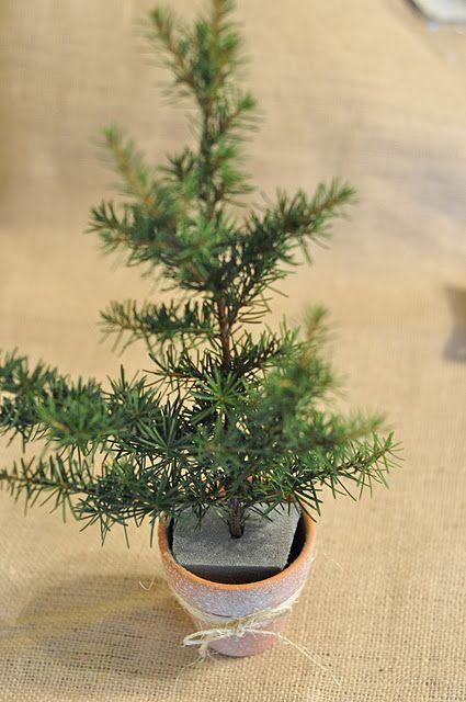 turn a twig into a mini Christmas tree.