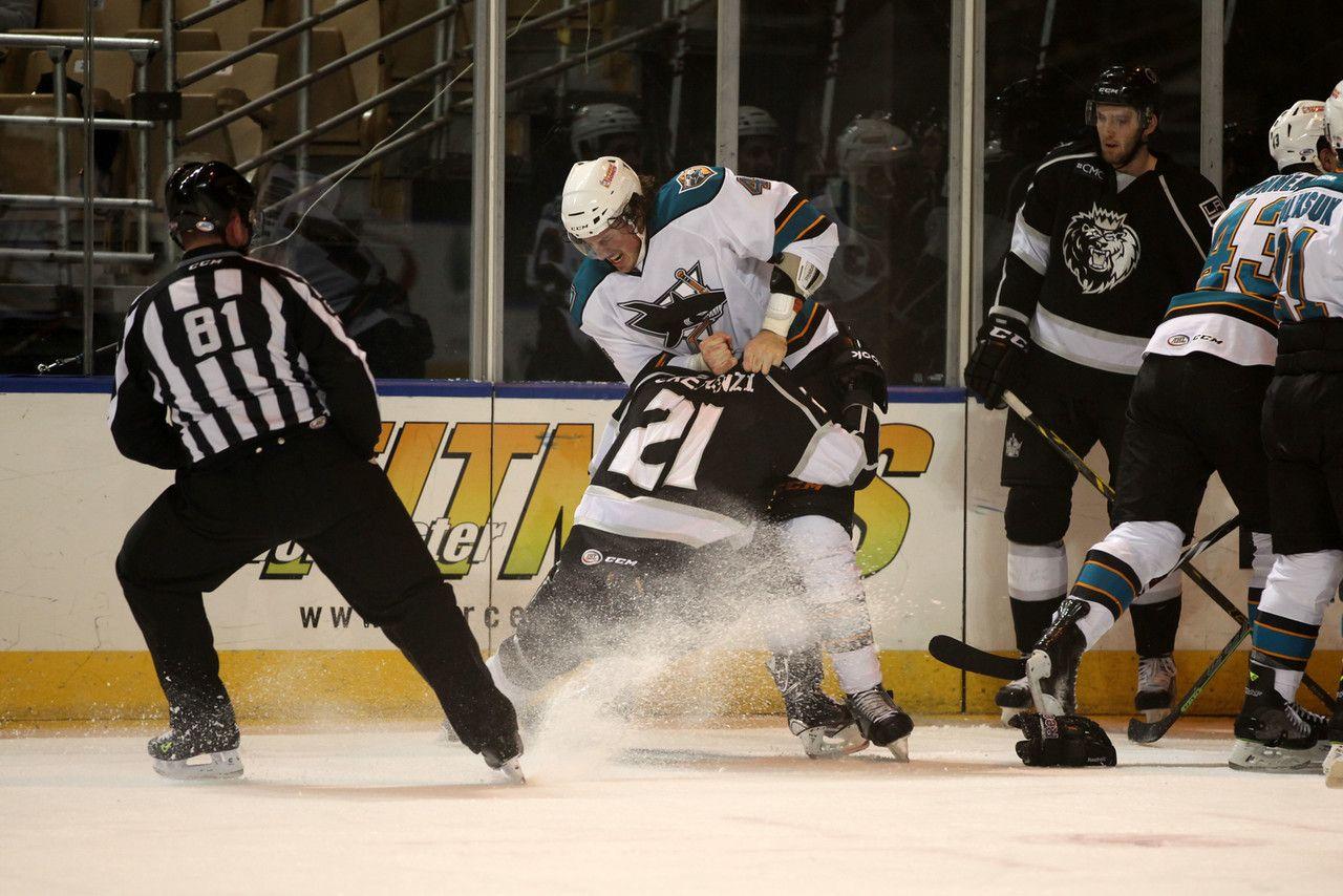 Worcester Sharks defenseman Taylor Doherty pounds Manchester Monarchs forward Andrew Crescenzi (Nov. 14, 2014).