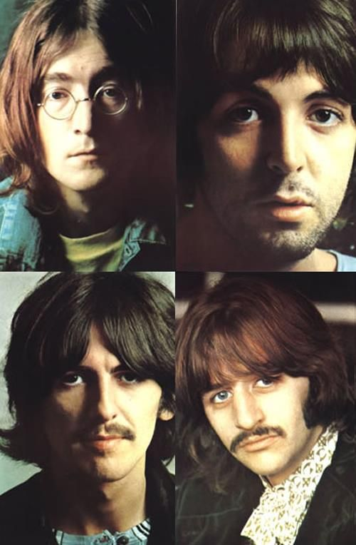 The Beatles White Album Color 8 X 10 Inserts Beatles