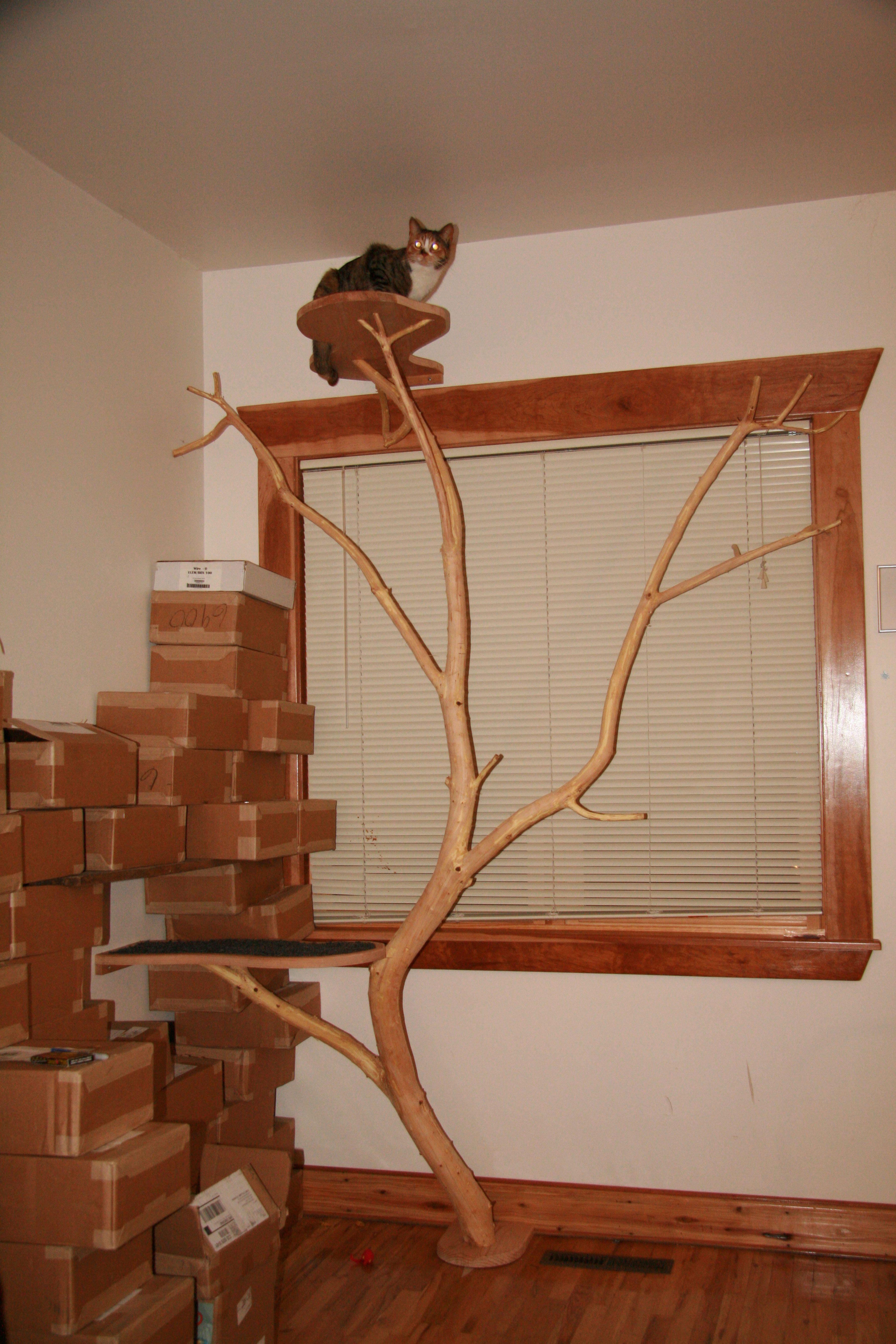 cat tree  clinton l wood  remodel timberwork carpentry  diy  - cat tree  clinton l wood  remodel timberwork carpentry
