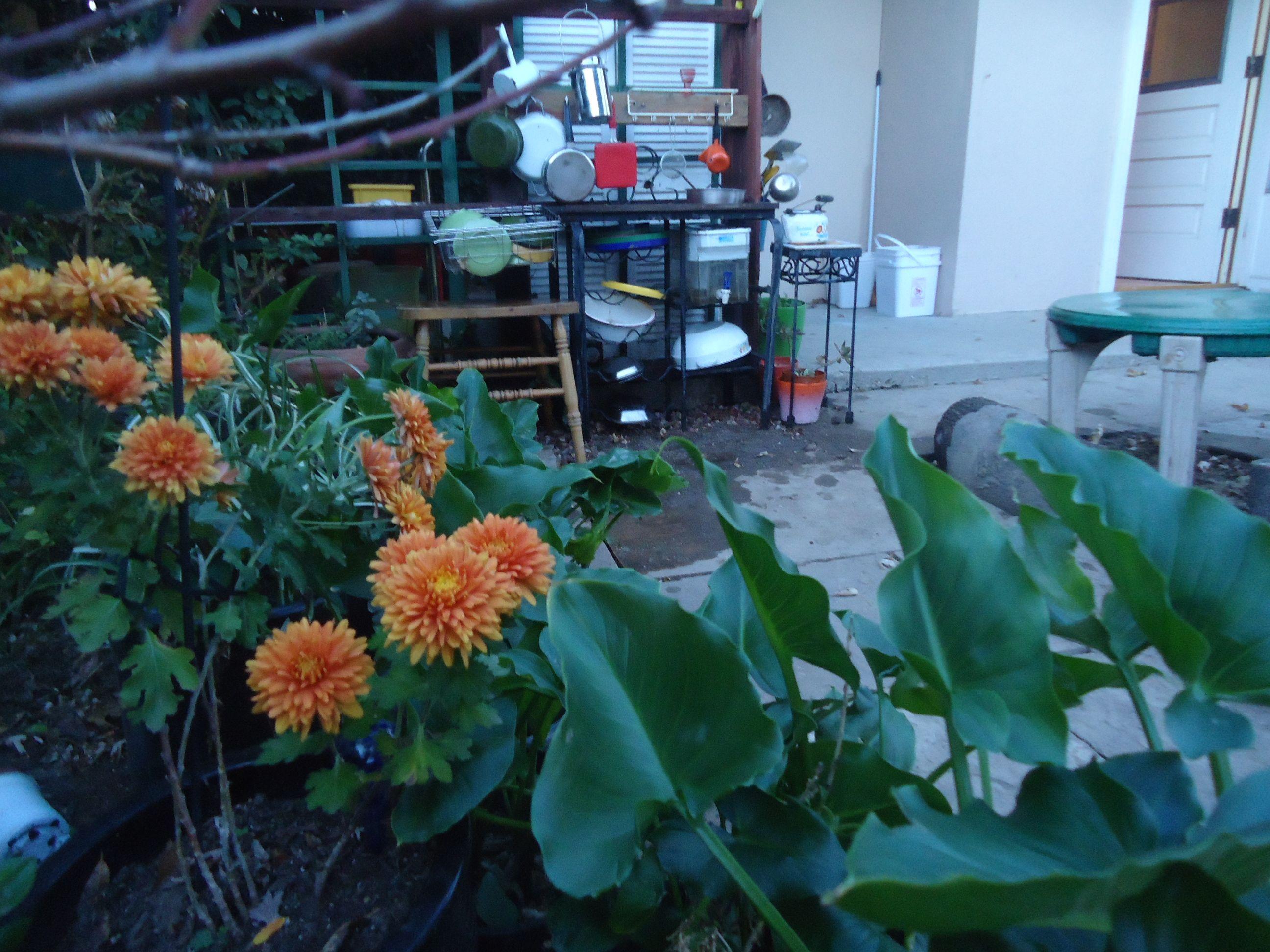 Mud kitchen outdoors. | Reggio inspired | Pinterest | Mud kitchen ...
