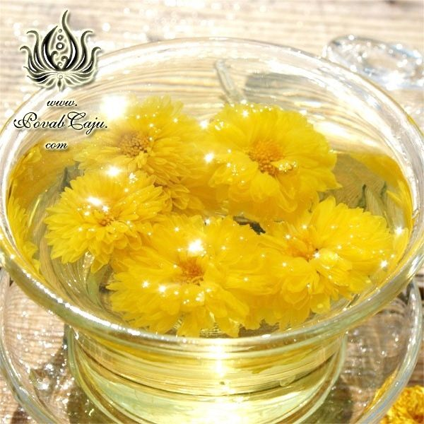 Golden Chrysanthemum Ju Hua Cha Flower Tea Sun Flower Faces Flower Tea Chrysanthemum Flowers