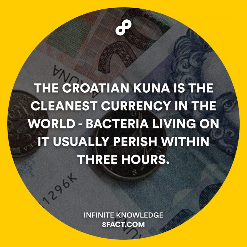 The Croatian Kuna Is The Cleanest Currency In The Worldbacteria