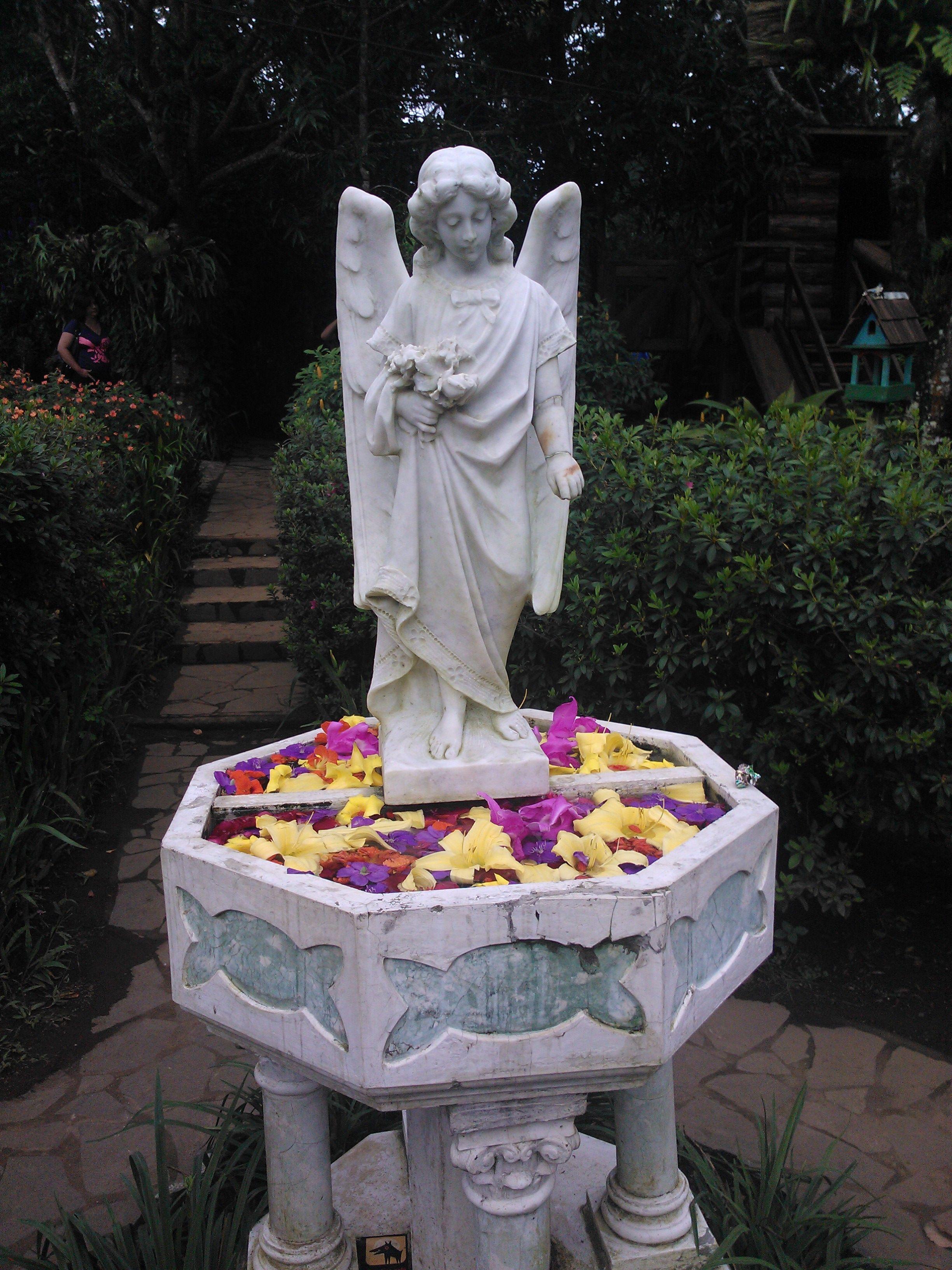 De El Jardín de Celeste, Ruta de las Flores, entre Apaneca y Ataco ...