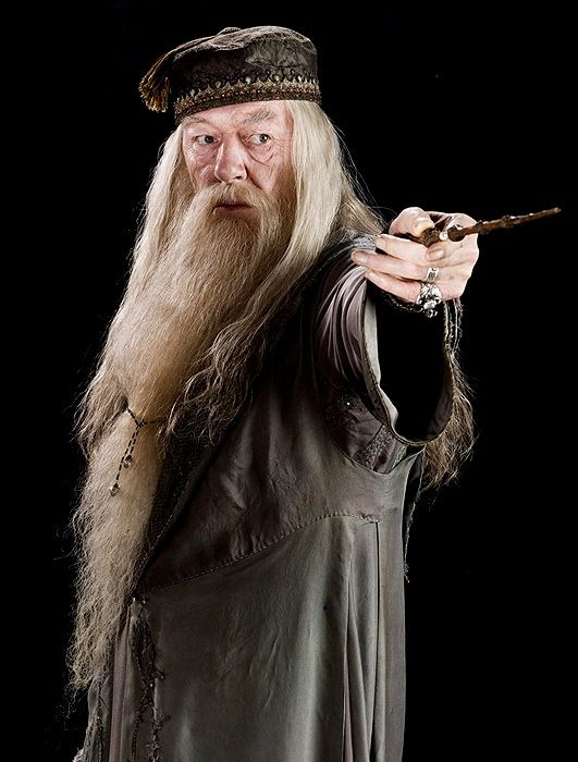 What Job Would You Have In The Harry Potter World Harry Potter World Albus Dumbledore Harry Potter Bucher
