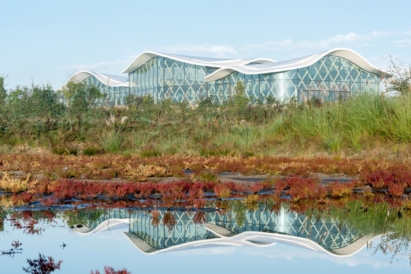 Lattice Framework Supports Undulating Roof At Swimming Pool By Brochet