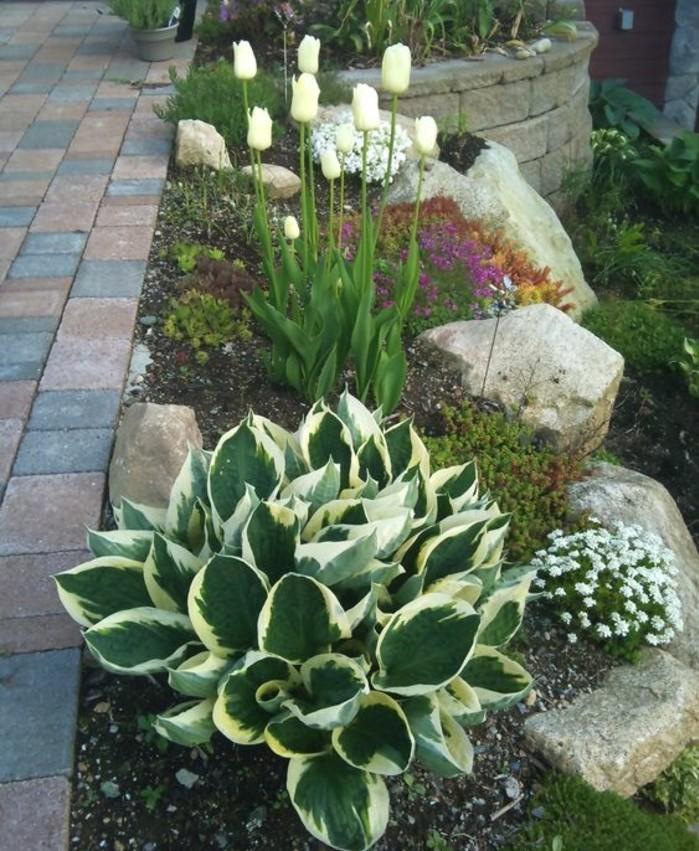 1001 Idees Et Conseils Pour Amenager Une Rocaille Fleurie Charmante En 2020 Decoration Jardin Idee Amenagement Jardin Amenagement Paysager Devant Maison