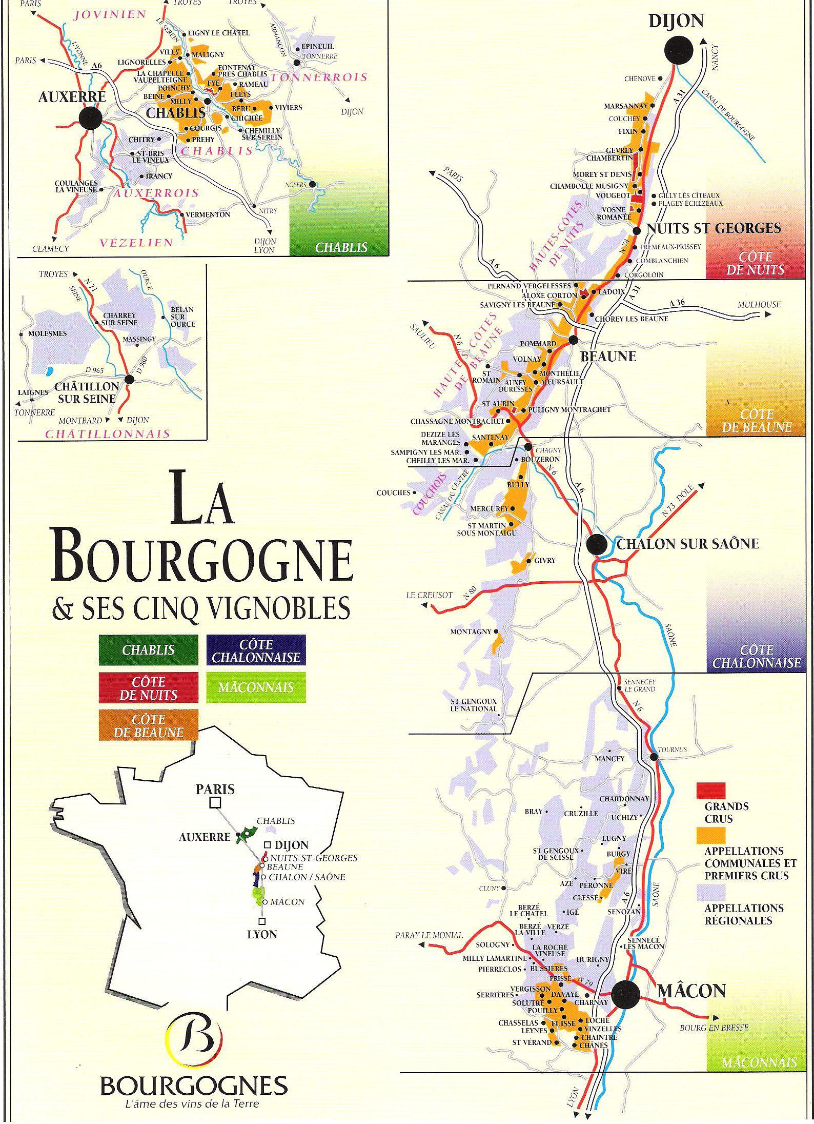 bourgogne or burgundy wine region of france regiones