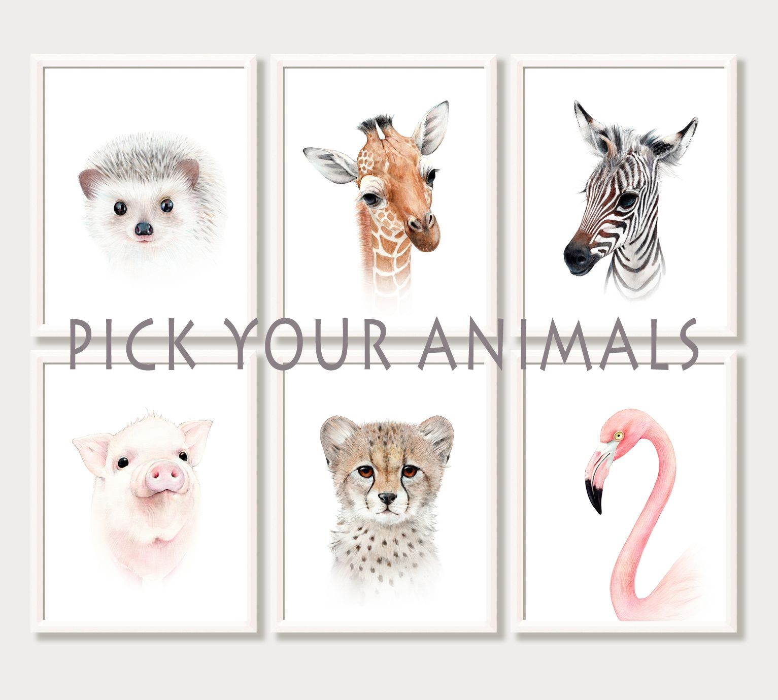 Animal Portraits Ilrations Baby