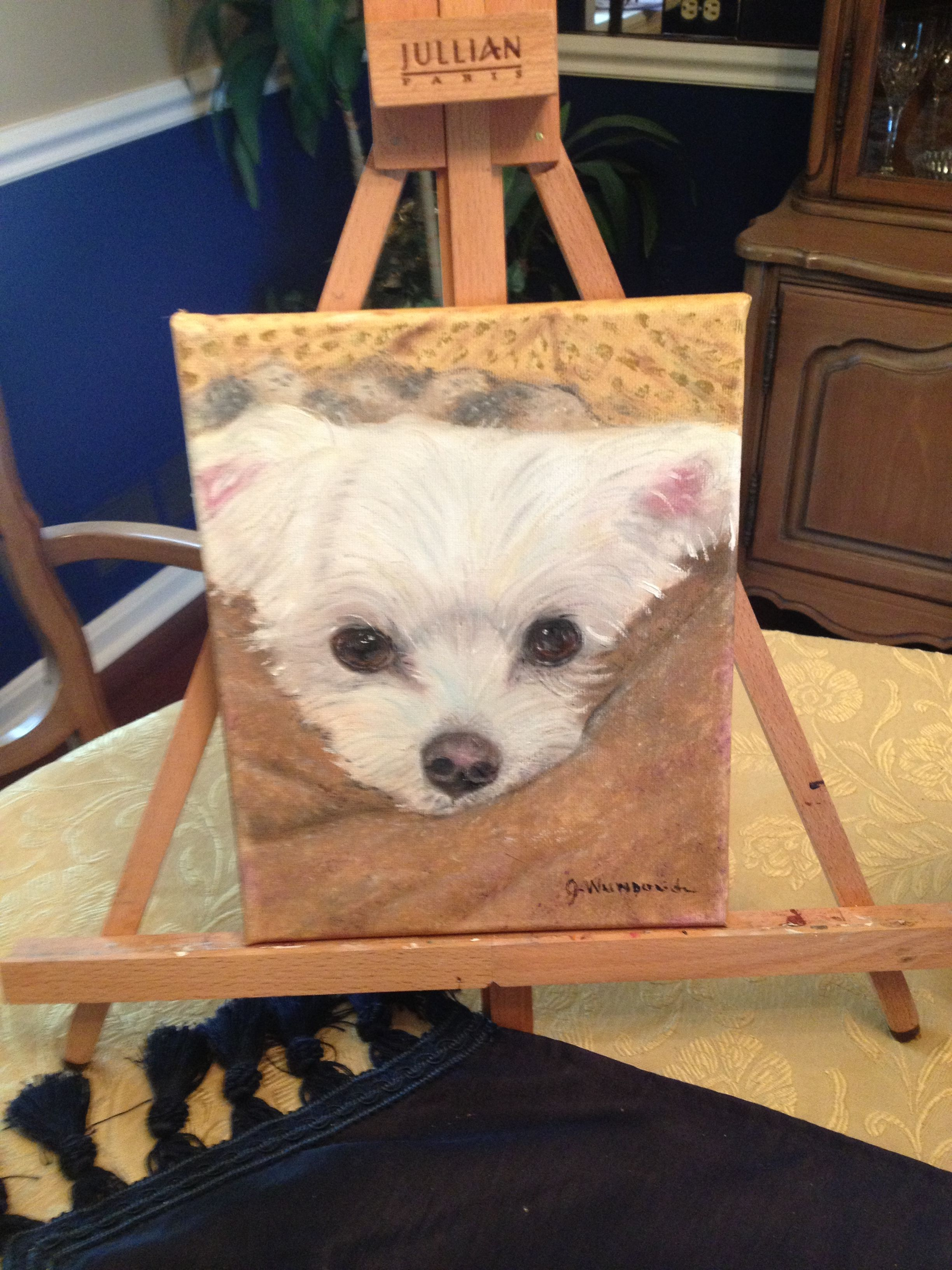 8x10 Oil Painting Of Maltese Maltese Puppy Golden Dog Cute Puppies