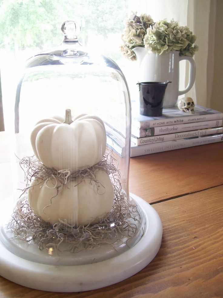 Easy peasy autumn décor idea cloche spanish moss small pumpkins