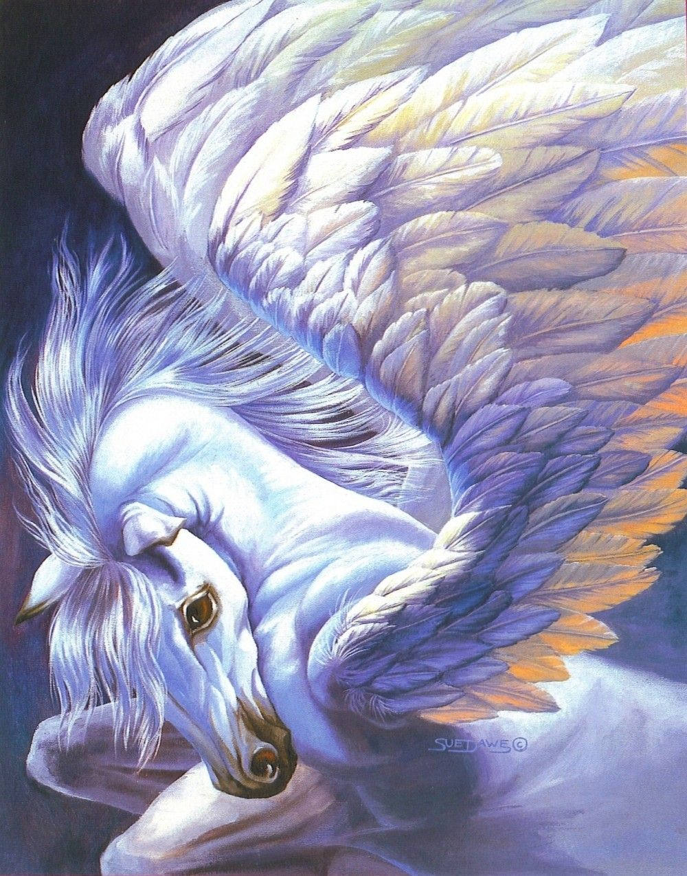 Wings By Sue Dawe In 2019 Horse Art Pinterest Pegasus Fantasy