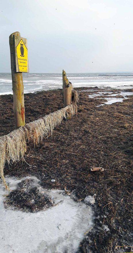 Der Winter an der Ostsee bietet herrliche Motive Ostsee