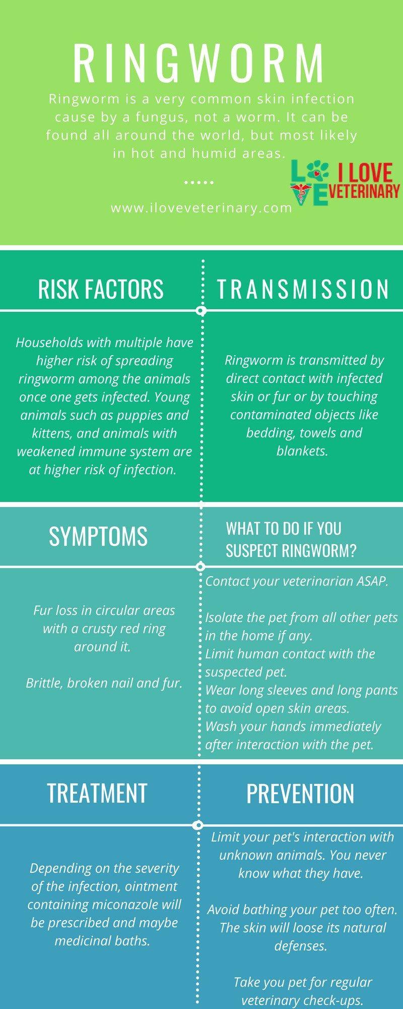 Ringworm Dermatophytosis I Love Veterinary Vet Medicine Veterinary Ringworm