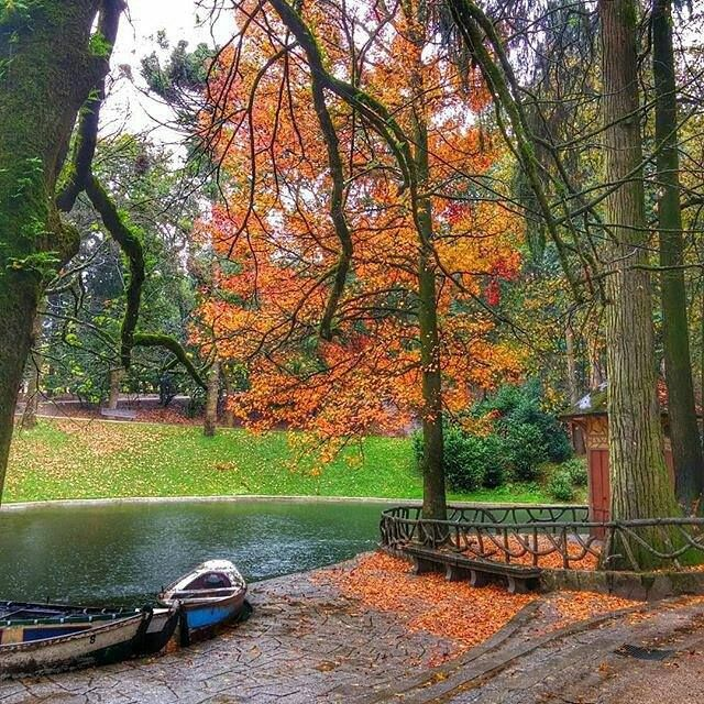 Autumn Colors at Lake of the Bom Jesus do Monte, Braga flavio miranda