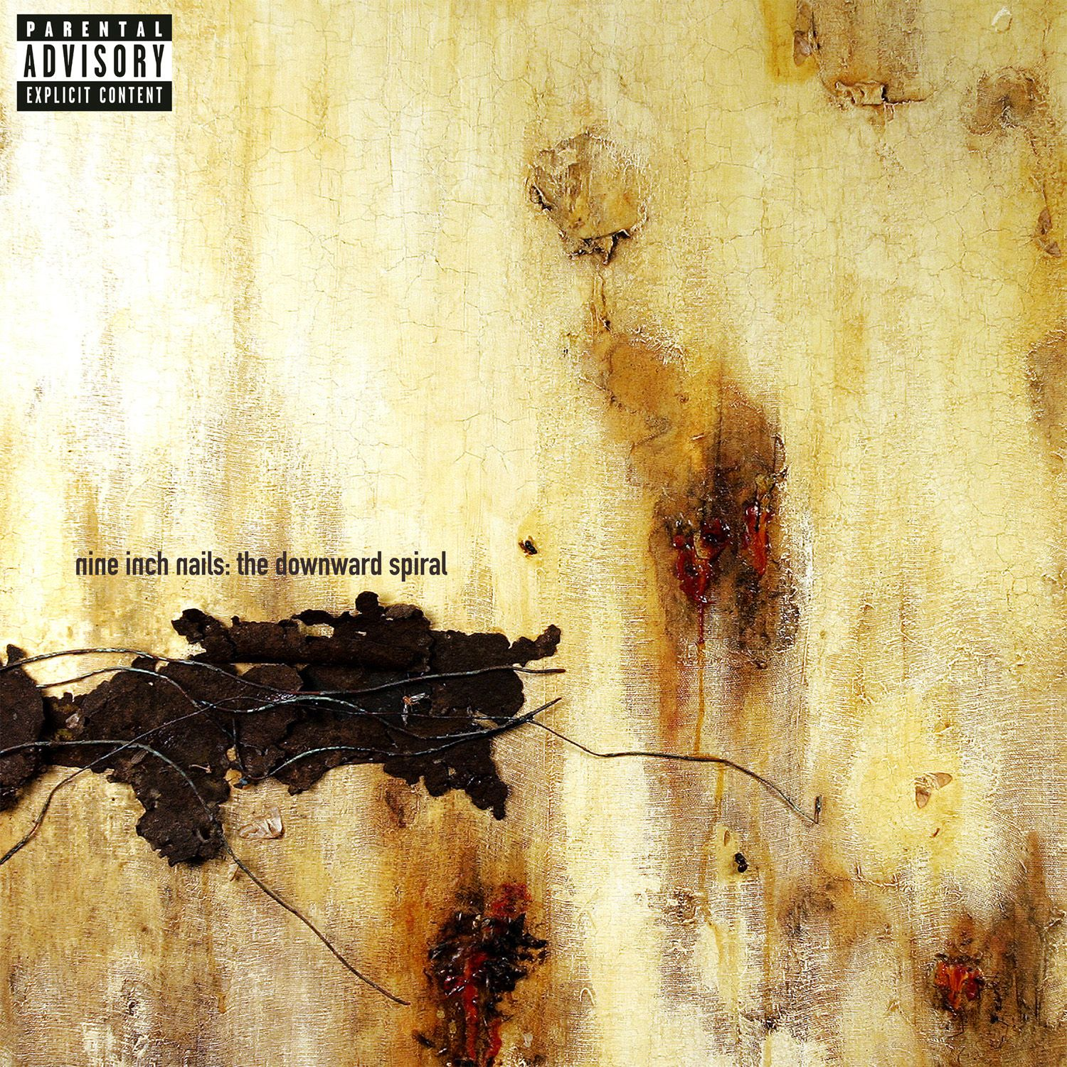 Album Covers / Nine Inch Nails / The Downward Spiral | The Album ...