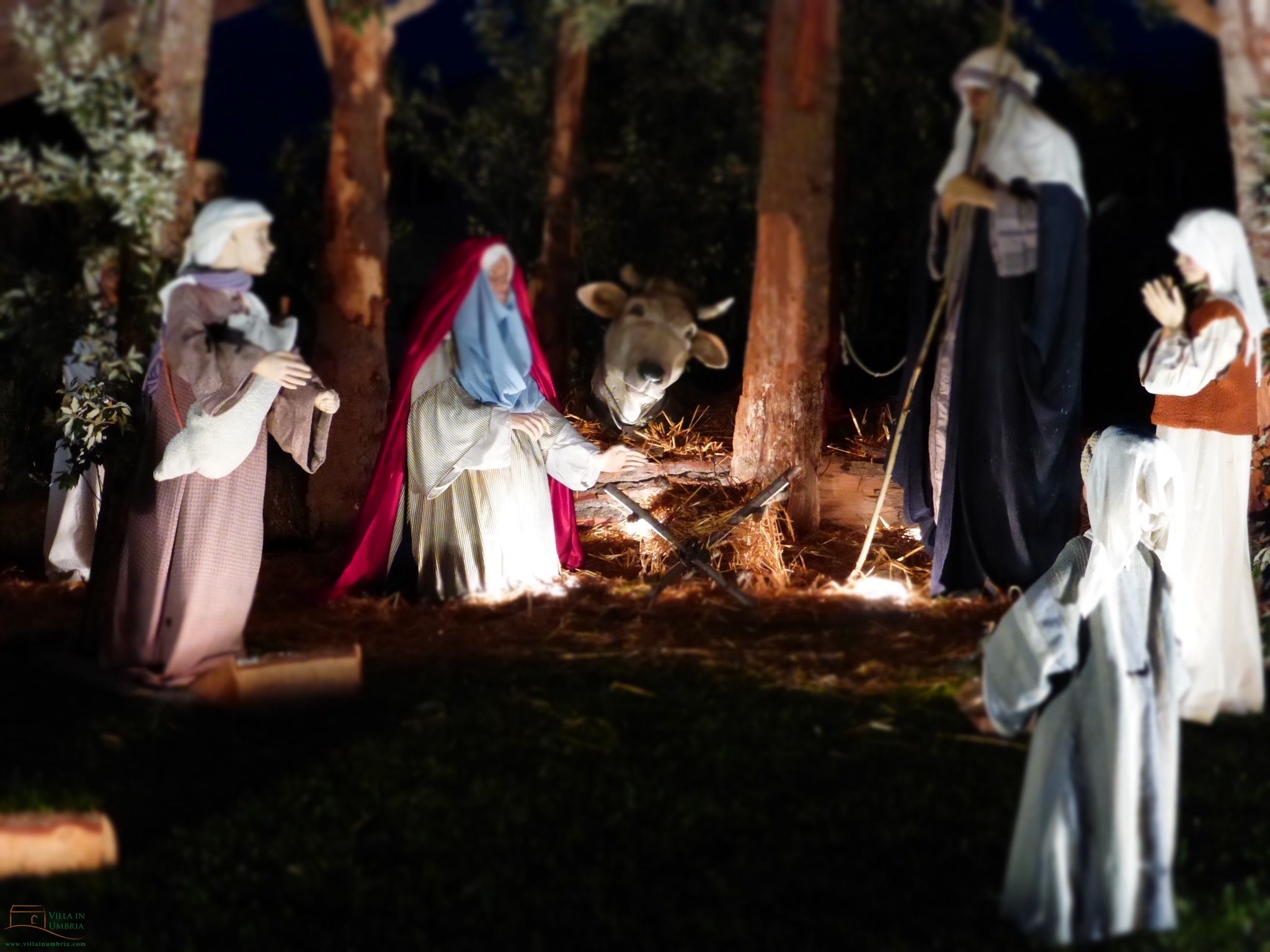 La magia del Natale in Assisi Umbria