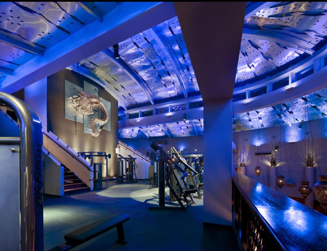 Pin By Elvis Restaino On 01 Satya Main Dream Gym Gym Design Gym Interior