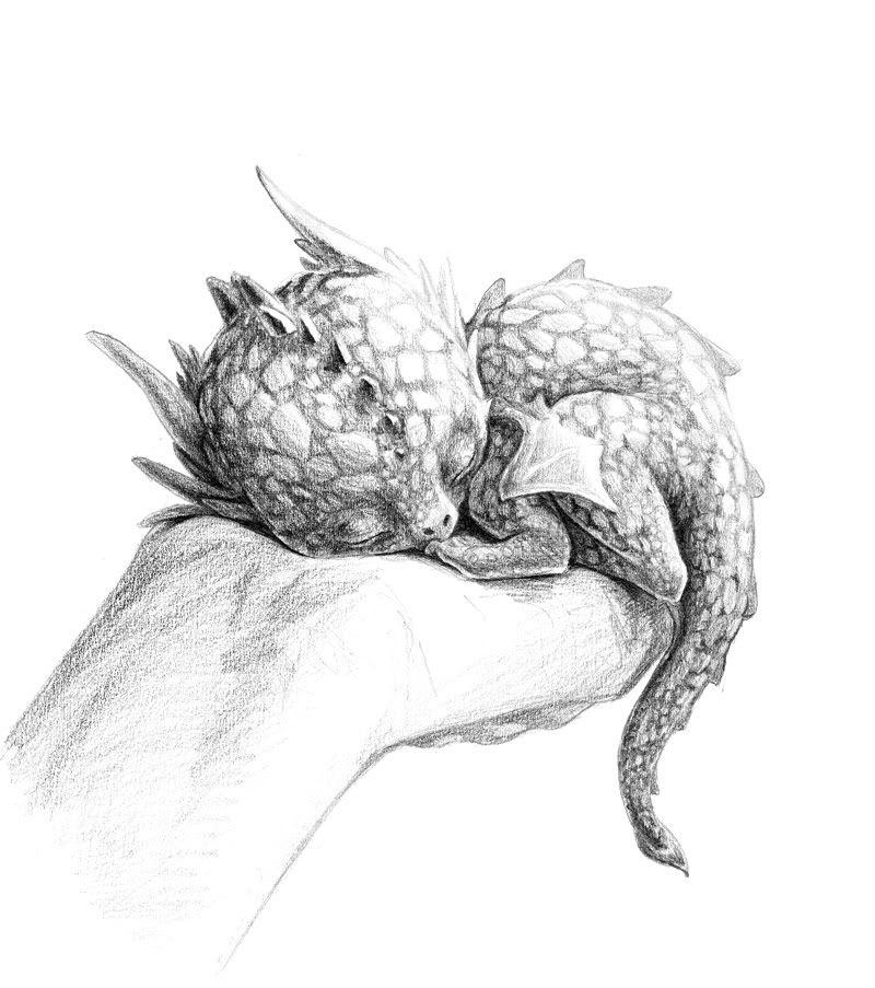 Baby Dragon   Drachen, Zeichnungen und Zeichnen