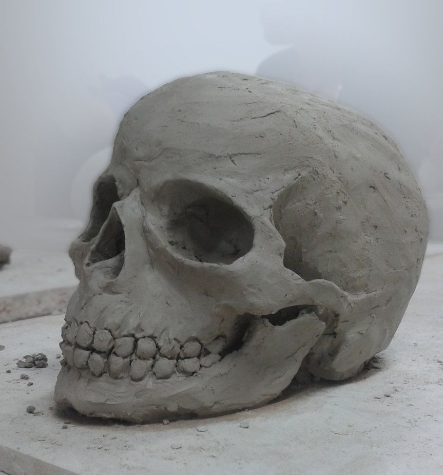 clay sculpture | skull___clay_sculpture_by_jbn0s0rus ...