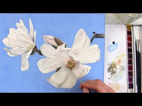 How To Paint A Realistic White Magnolia Flower In Watercolor Watercolor Flowers Tutorial Floral Painting Flower Painting