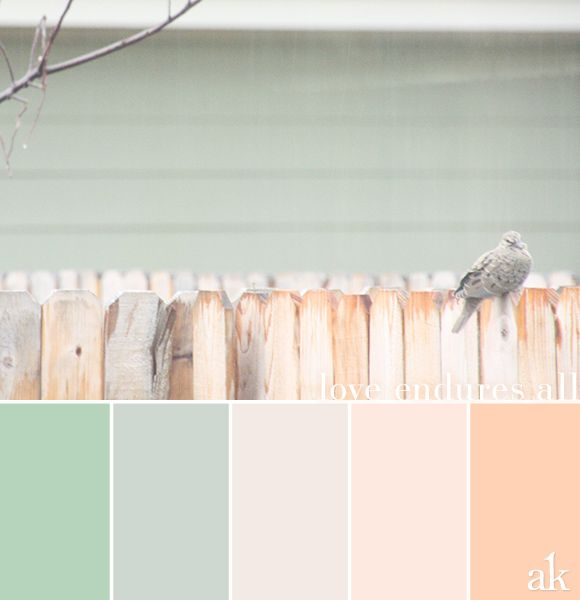 A Backyard-dove-inspired Color Palette // Pastels, Green