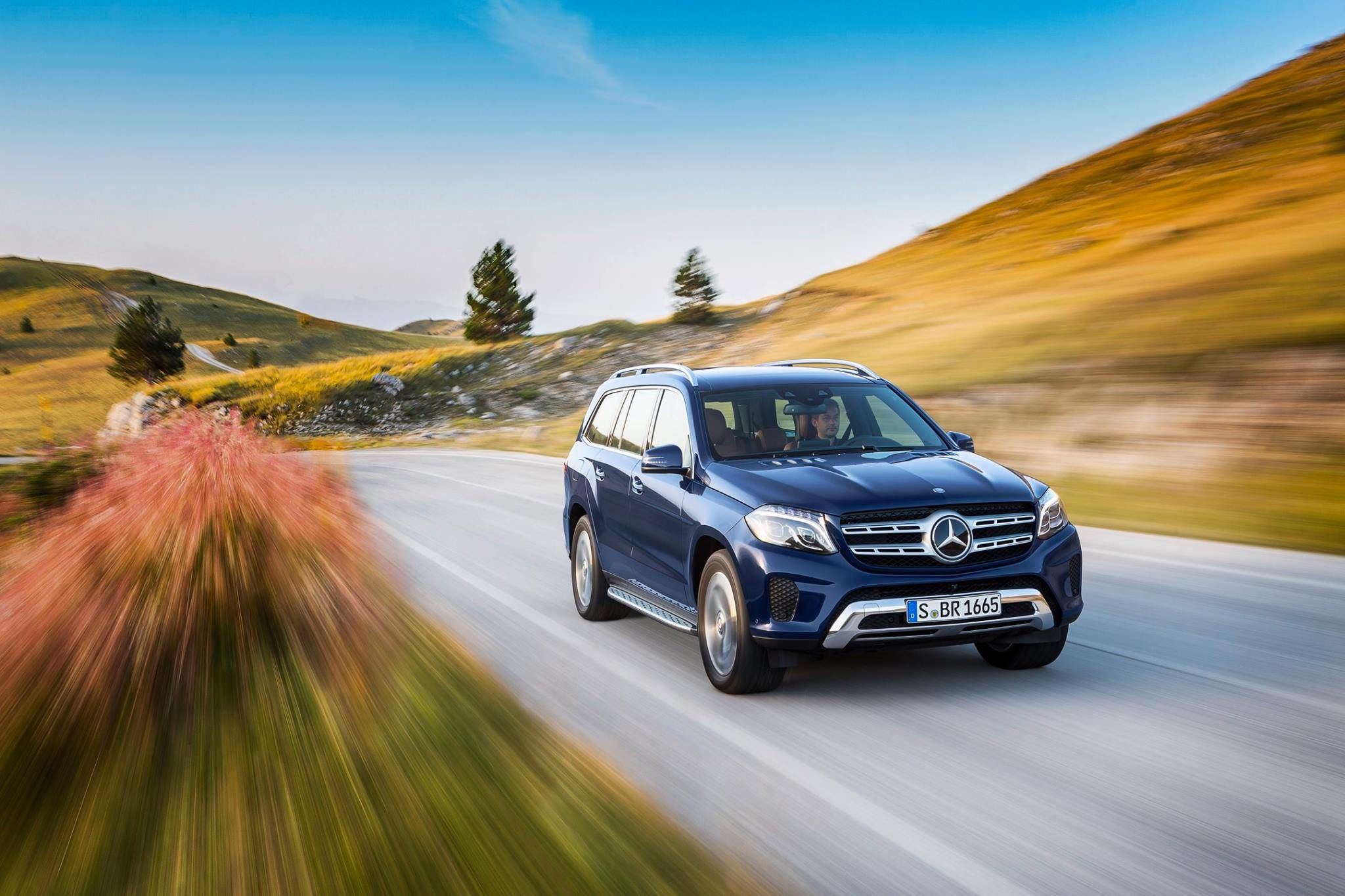 mercedes rosa sales leasing inventory benz auto