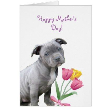 Happy Mother S Day Pitbull Puppy Card Zazzle Com Happy Mothers