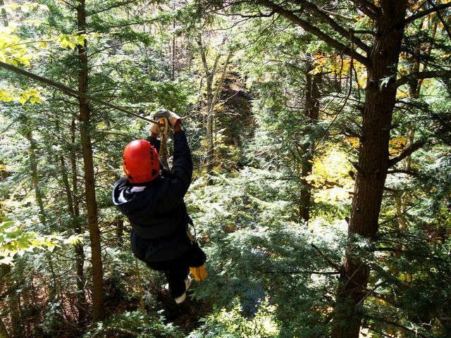 10 Best Zipline Courses In The Usa Via Usatoday