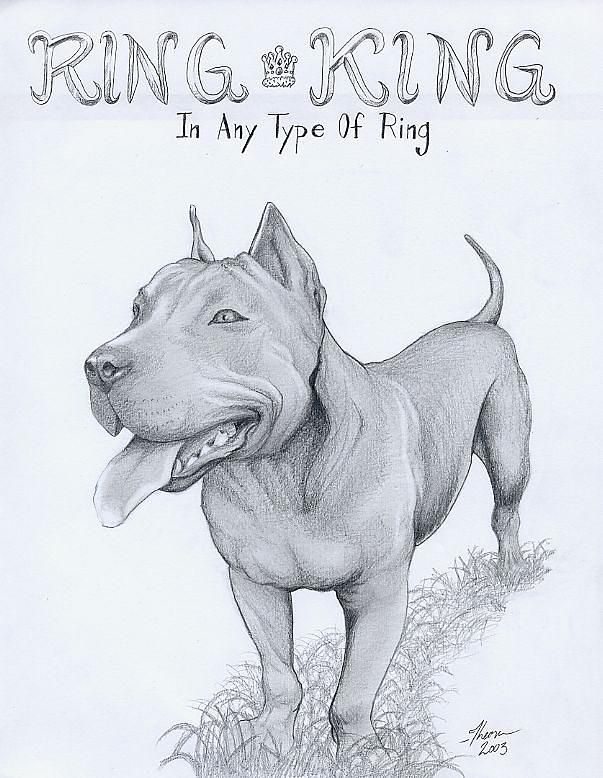 Cute Pitbull Drawings Pitbull Drawing Drawings Dog Pictures