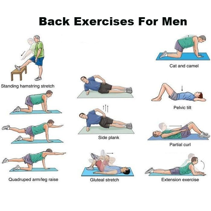 Lower Back Workout Chart For Men