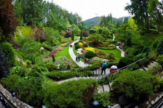 Jardines Japones Jardines Japoneses Pinterest