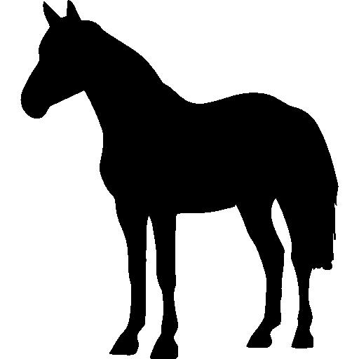 Horse Standing Black Shape Free Vector Icons Designed By Freepik Horse Silhouette Animal Silhouette Horses