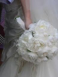 Bouquet Sposa Garofani.Bouquet Sposa Garofani Bianchi Cerca Con Google Sposa Bouquet