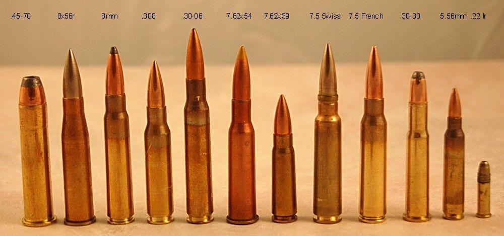 Rifle Caliber Size Comparison | hunting | Pinterest | Rifles ...