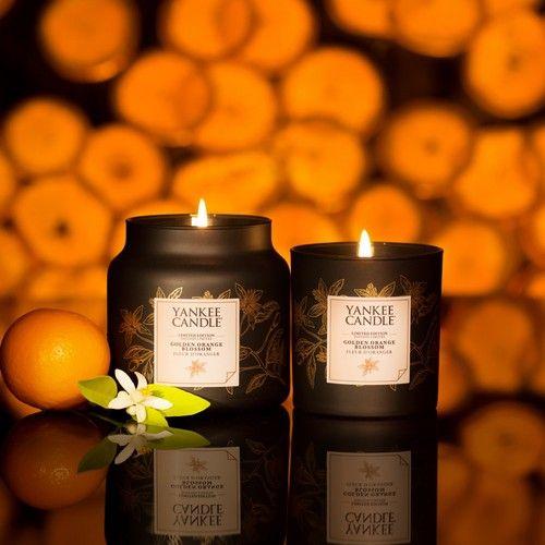 Golden Orange Blossom Le Parfum Captivant De La Fleur D Oranger