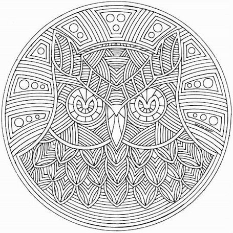 a beautiful owl mandala although i will say he looks a little angry