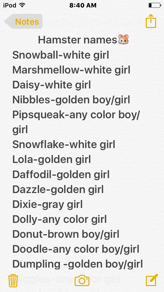 Hamster Names What Color I Think They Should Be And Weather It Is