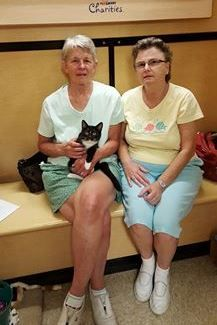 Congratulations to Crunch (soon to be Maks) & his new pet parents Kyle & Sharon! #rescue #adoptdontshop #kitten