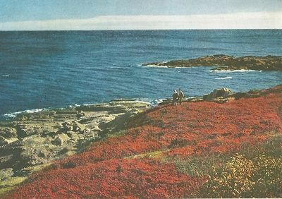 Ogunquit, Maine  National Geographic | September 1945