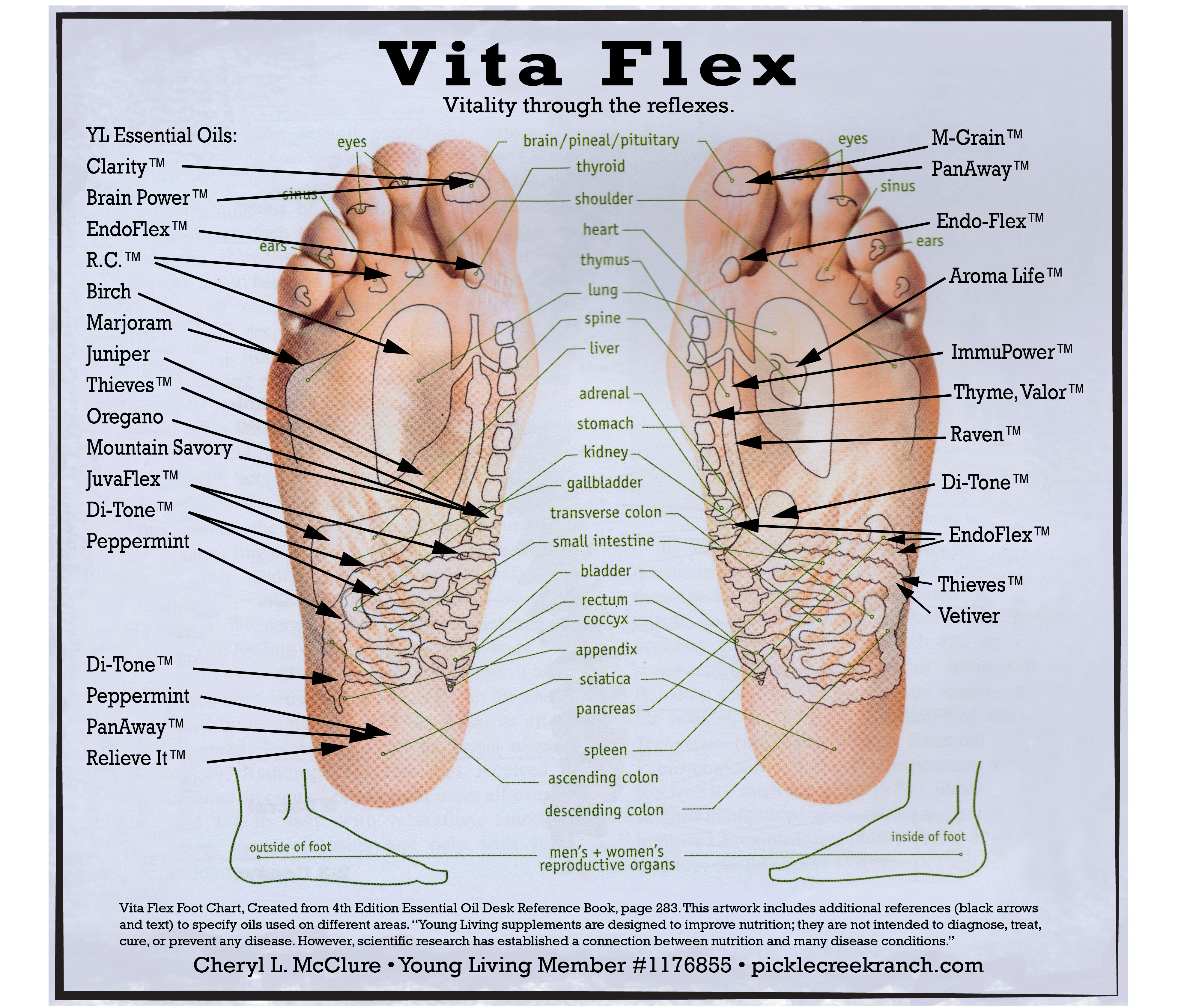Vita flex foot chart using young living therapeutic grade essential oils don   forget you can put the on your feet also rh pinterest