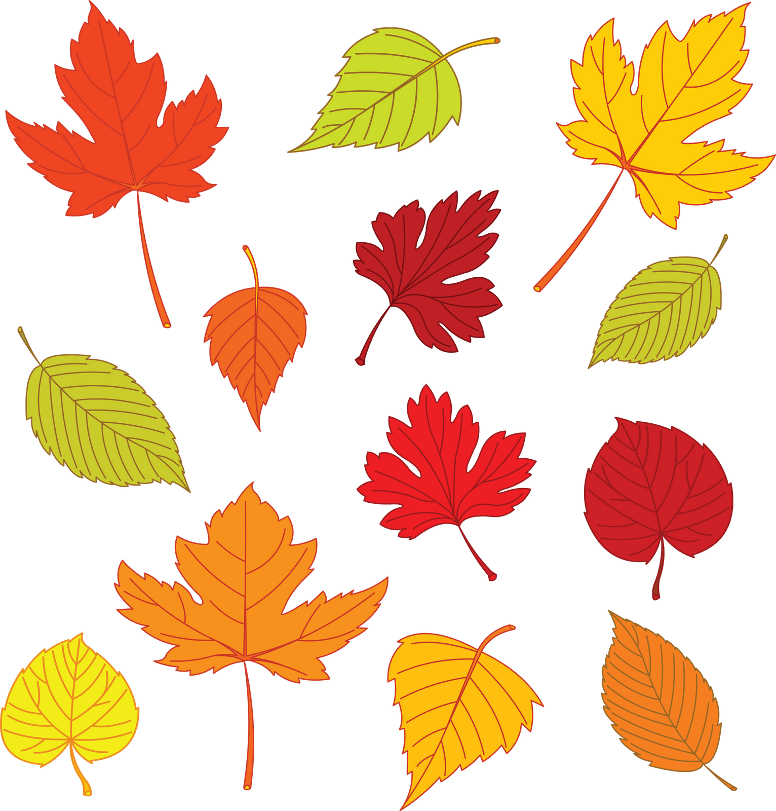 Free Leaf Templates Of Leaves