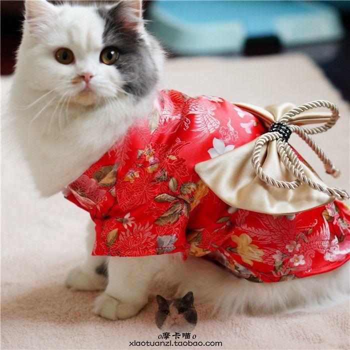 Cat Clothes Bride Outfit Japanese Dog Puppy Clothes Dress Pet