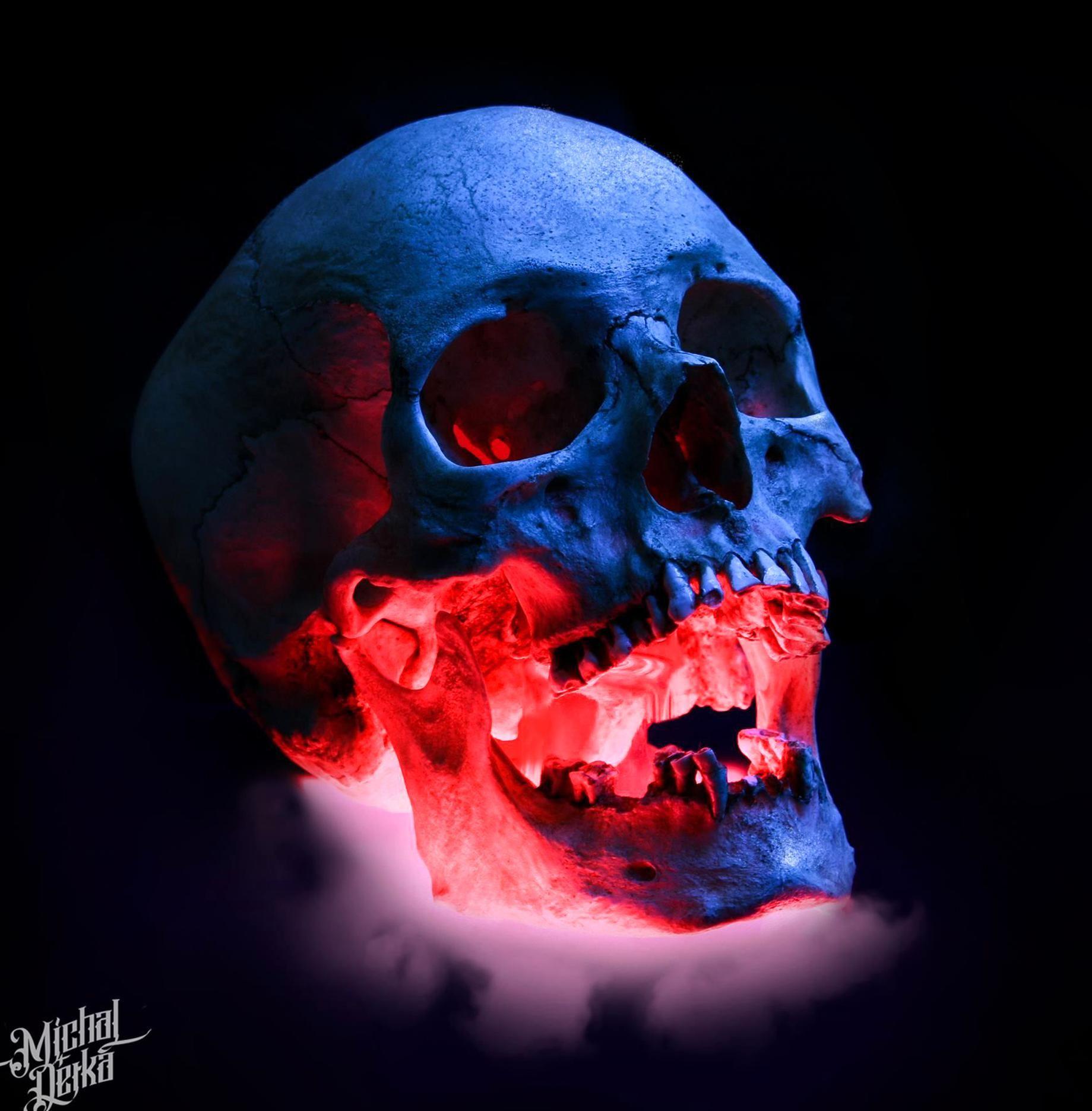 Skull Tattoo Reference Best Photo By Michal Detka In 2020 Skull Artwork Skull Painting Skull Reference