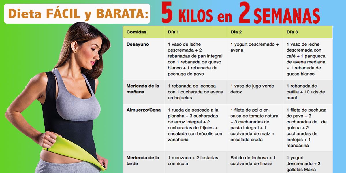 Dieta 5 Kilos En 2 Semanas Fácil Y Barata Club De Dietas