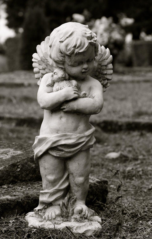 Garden Statue, Cherub Angel, Little Boy Holding His Bunny, 5x7 Black And  White