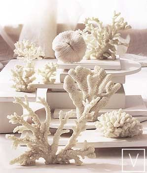 Coral. Cast resin impressions of real coral forms create a non-endangered seaside decor. 6 different types/styles available. Roost Luna Coral.