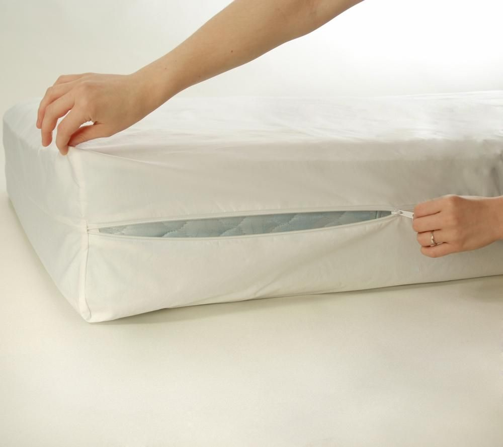 Amazon Queen Bed Bug Mattress Cover