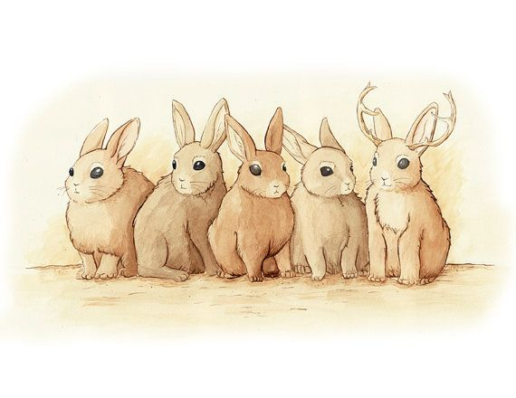 {A Bit Different} one of these is not like the other ... and that makes the jackalope the best of the bunnies! :D