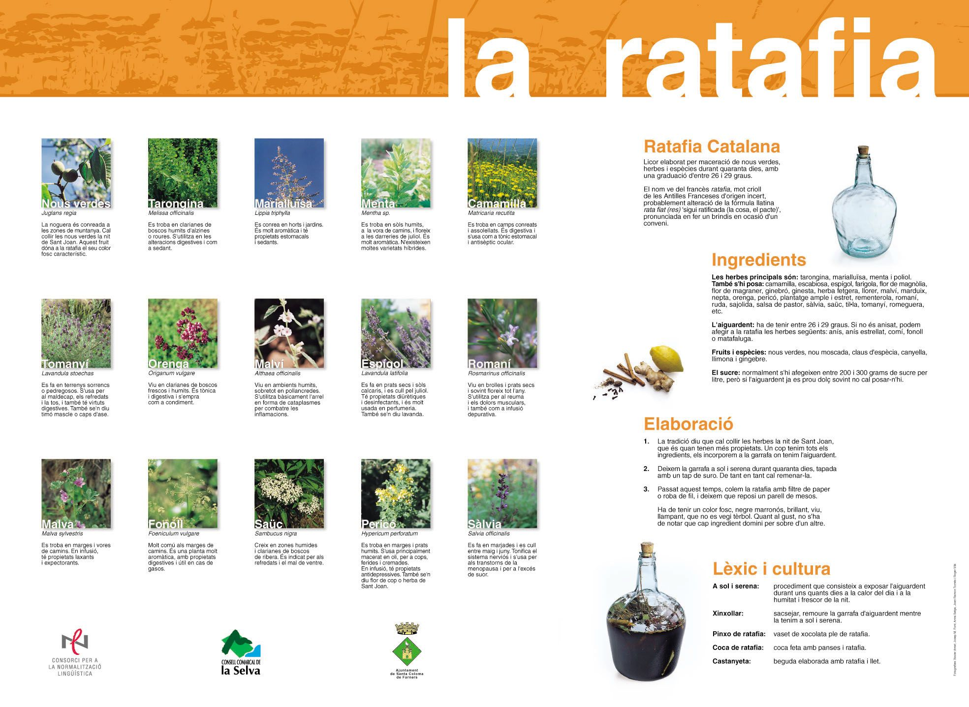 280 Catalan Ratafia Ideas Las Marias Catalan Recipes Bottle Design Packaging